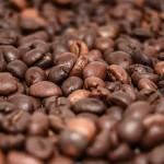 Kaffee Bohnen Sorten - Es gibt viele und doch werden hauptsächlich nur zwei Sorten weltweit gehandelt. Erfahre welche Kaffee Sorten es sind.