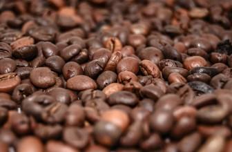 Alles was du über Kaffeebohnen wissen musst